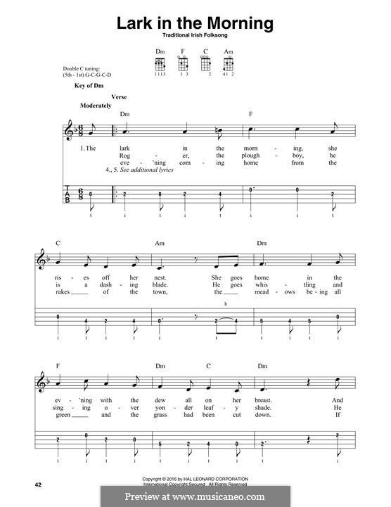 Lark in the Morning: For banjo by folklore