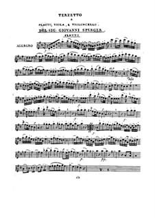 Терцет для флейты, альта и виолончели ре мажор: Терцет для флейты, альта и виолончели ре мажор by Иоганнес Маттиас Шпергер