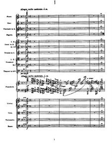 Концерт для фортепиано с оркестром ля минор, Op.16: Часть I by Эдвард Григ