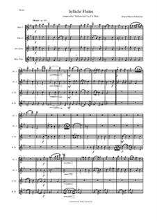 Jellicle Catgut: Для квартета флейт by Дэвид Соломонс