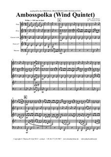 Amboss Polka: For wind quintet by Альберт Парлов