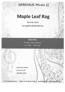 Maple Leaf Rag: For flute trio by Скотт Джоплин