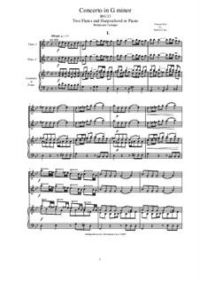 Concerto for Two Flutes and Strings in G Minor: Version for two flutes and piano by Бальдассаре Галуппи