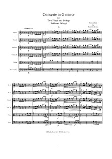 Concerto for Two Flutes and Strings in G Minor: Score, parts by Бальдассаре Галуппи