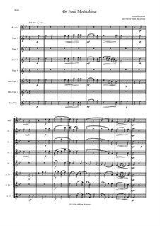 Os justi, WAB 30: For flute choir by Антон Брукнер