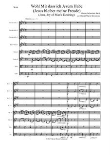Jesus bleibet: For clarinet quartet and strings by Иоганн Себастьян Бах