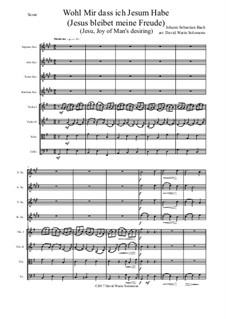 Jesus bleibet: For saxophone quartet and strings by Иоганн Себастьян Бах
