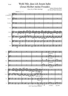 Jesus bleibet: For brass quartet and strings by Иоганн Себастьян Бах