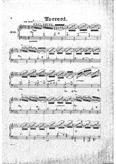 Тридцать прогрессивных этюдов, Op.46: Этюд No.29 by Стефан Геллер