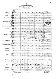 Die Brautwahl (The Bridal Choice), BV 261 Op.45: Лирическая музыка by Ферруччо Бузони