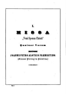Veni Sponsa Christi: Kyrie by Джованни да Палестрина