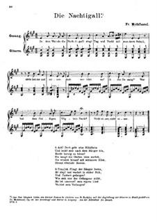 Соловей: Соловей by Фридрих Метфессель