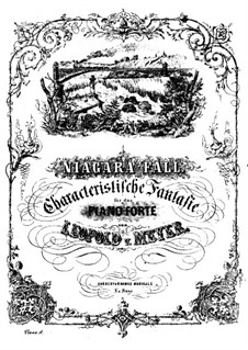 Ниагарский водопад, Op.60: Ниагарский водопад by Леопольд де Мейер