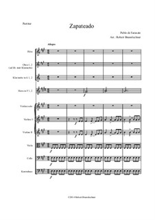 Zapateado, Op.23: For symphonic orchestra by Пабло де Сарасате