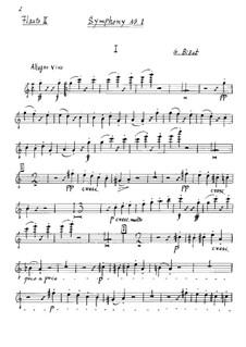 Симфония No.1 до мажор: Партия II флейты by Жорж Бизе