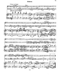 Струнный секстет No.2 соль мажор, Op.36: Часть II. Версия для фортепианного трио by Иоганнес Брамс