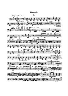 Концерт для виолончели с оркестром си минор, B.191 Op.104: Партия ударных by Антонин Дворжак