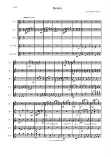 Details: For flute quintet (3 C flutes, 1 alto flute, 1 bass flute) by Дэвид Соломонс