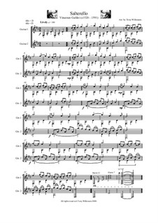 Saltarello: For guitar by Винченцо Галилеи