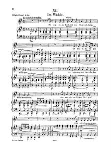 No.11 В лесу: Для голоса и фортепиано by Роберт Шуман