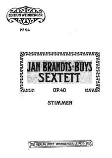 Струнный секстет ре мажор, Op.40: Скрипка I by Ян Брандс-Бёйс