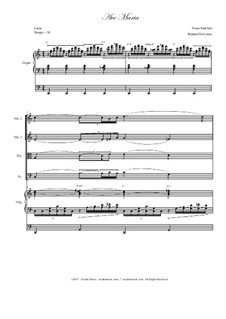 Аве Мария, D.839 Op.52 No.6: For string quartet - organ accompaniment by Франц Шуберт