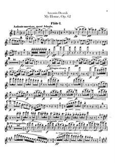 Моя Родина, B.125a Op.62: Партии флейт by Антонин Дворжак