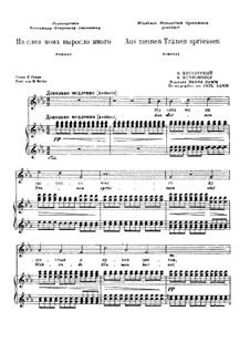 Из слез моих выросло много: Для голоса и фортепиано by Модест Мусоргский