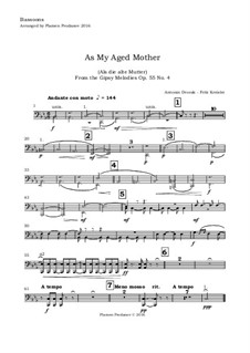 Цыганские напевы, B.104 Op.55: No.4 Songs My Mother, for violin and orchestra (score and parts) by Антонин Дворжак