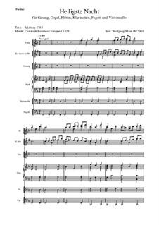 Heiligste Nacht: Stimme und Instrumenten by Кристоф Бернхард Фершпель