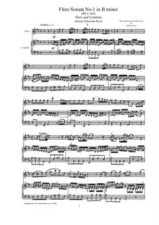 Соната для флейты и клавесина No.1 си минор, BWV 1030: Партитура, сольная партия by Иоганн Себастьян Бах