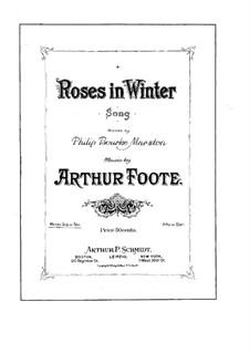 Roses in Winter: Roses in Winter by Артур Фут