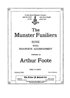 The Munster Fusiliers: The Munster Fusiliers by Артур Фут