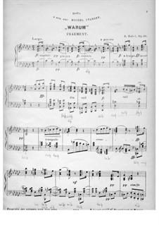 Warum, Op.28: Warum by Альберт Цабель