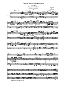 Concerto in G minor for Flute and String Quartet: Version for flute and cembalo (or piano), CS-LR3 by Giacomo de Lucchesini