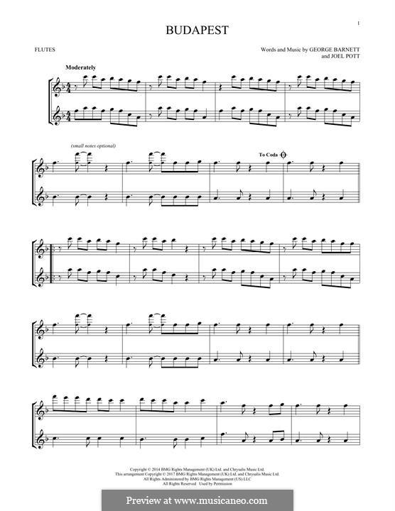 Budapest: Для двух флейт by Joel Pott, George Ezra Barnett