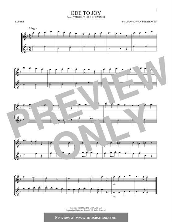 Ода к радости: Version for two flutes by Людвиг ван Бетховен