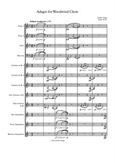 Adagio for Woodwind Choir: Adagio for Woodwind Choir by Jordan Grigg