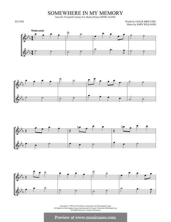 Somewhere in My Memory: Для двух флейт by John Williams