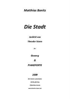 Die Stadt: Die Stadt by Matthias Bonitz