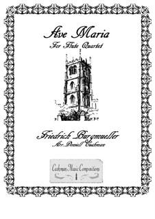 No.19 Ave Maria: Для квартета флейт by Иоганн Фридрих Бургмюллер