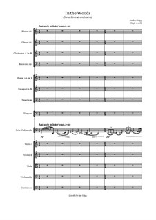 In the Woods (for cello and orchestra): In the Woods (for cello and orchestra) by Jordan Grigg