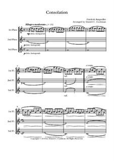 No.13 Consolation: For flute trio by Иоганн Фридрих Бургмюллер