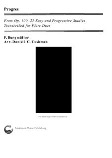 No.6 Progrès (Progress): Для двух флейт by Иоганн Фридрих Бургмюллер