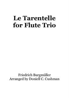 No.20 Le Tarantelle: For flute trio by Иоганн Фридрих Бургмюллер