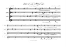 Allein zu haus' um Mitternacht: Allein zu haus' um Mitternacht by Berndt Leopolder