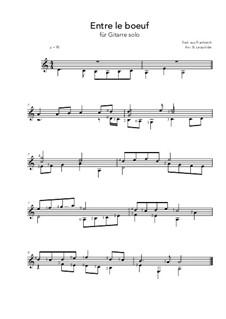 Entre le boeuf et l'âne gris: For guitar by folklore