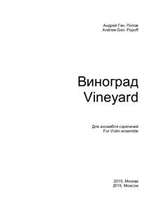Виноград: Виноград by Андрей Попов
