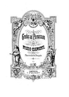 Новое пересмотренное издание: Новое пересмотренное издание by Муцио Клементи