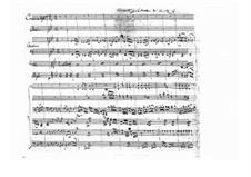 Концерт для альта с оркестром си-бемоль мажор (Незаконченный), BI 555: Партитура by Алессандро Ролла